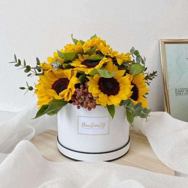 Sunflower Bloom Box - Regular